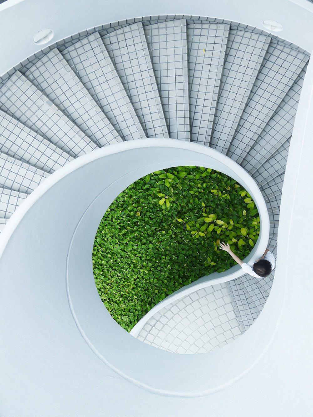 staircase nature building